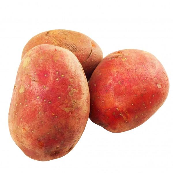 Bellarosa Kartoffeln rot 10Kg Sack mehlig versandkostenfrei