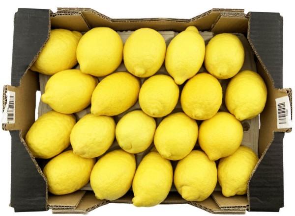 Zitronen Spanien neue Ernte HKL I 3500g 20er Kiste