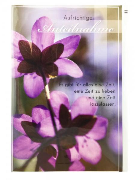 Trauerkarte Bunt Aufrichtige Anteilnahme Blumenmotiv