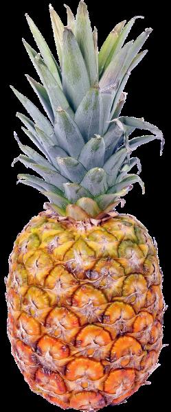 Ananas Extra Sweet mit Krone aus Costa Rica Klasse I