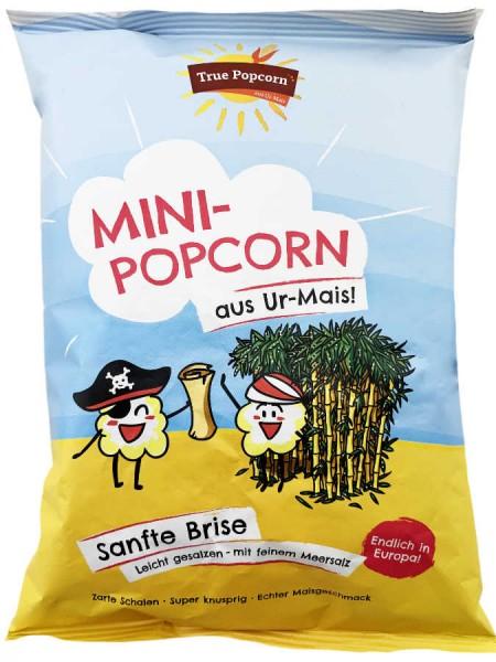 True Popcorn aus Ur Mais leicht gesalzen 25g