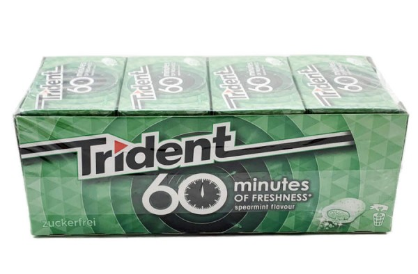 Trident White Spearmint Minze Kaugummi zuckerfrei 16er Set 320g